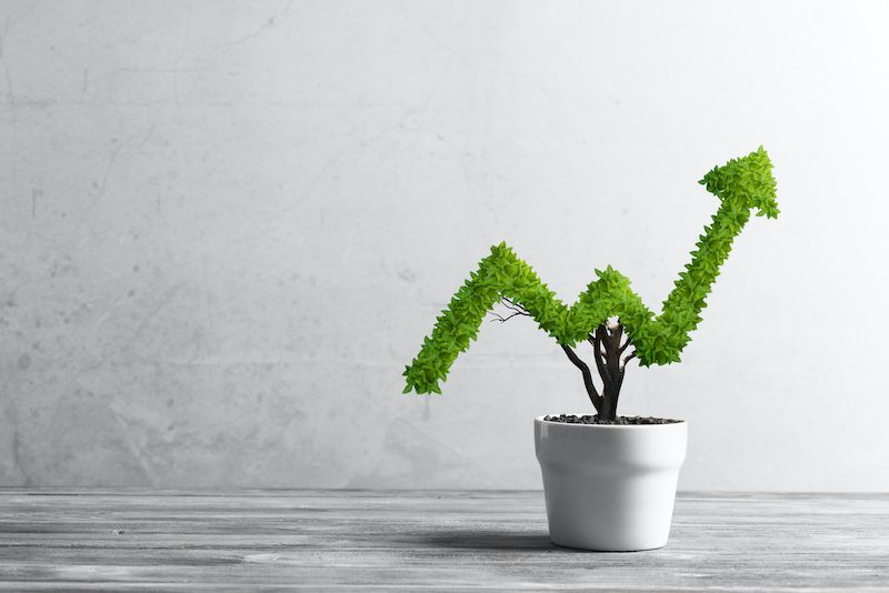 How SureStore Ashton can help Grow your Business